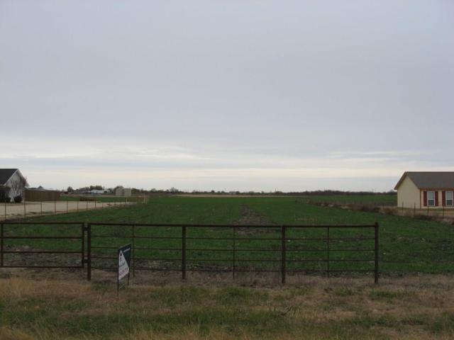 TBD January Lane, Ponder, TX 76259 (MLS #13506389) :: The Hornburg Real Estate Group