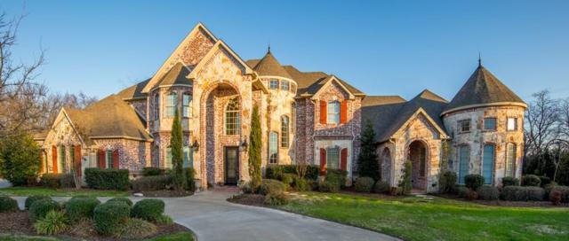 1026 Teagon Court, Pottsboro, TX 75076 (MLS #13552031) :: Team Hodnett