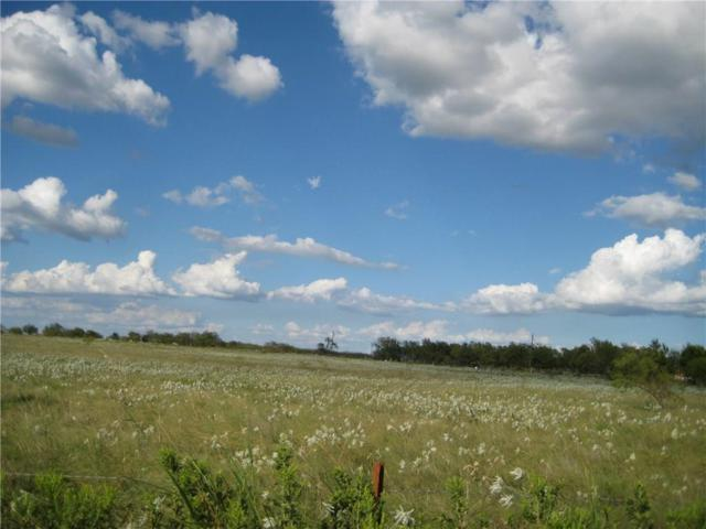 Lot 5 Lot 5 Ne Cr 1040, Rice, TX 75155 (MLS #13578046) :: HergGroup Dallas-Fort Worth