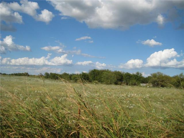 Lot 12 Ne Cr 1060 NE, Rice, TX 75155 (MLS #13578073) :: The Kimberly Davis Group