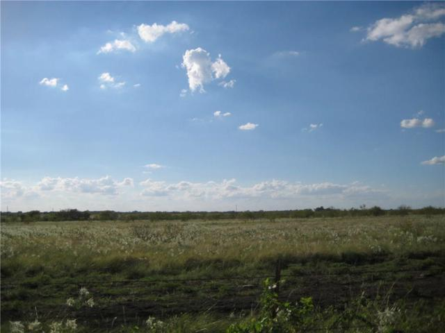 Lot 15 Ne Cr 1060, Rice, TX 75155 (MLS #13578082) :: North Texas Team | RE/MAX Advantage