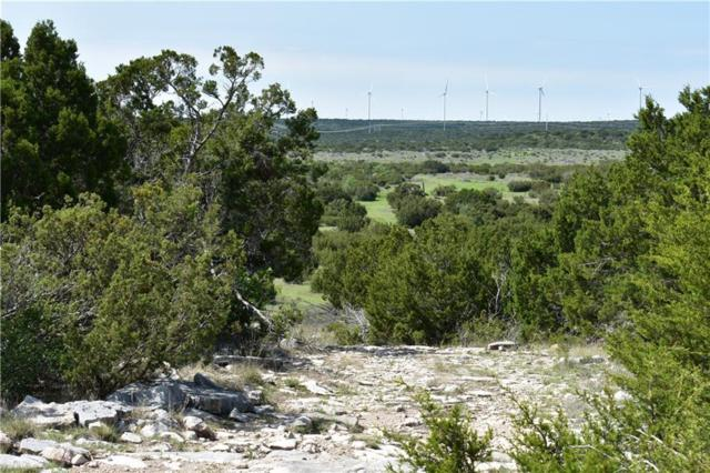 15310 Hwy 277 S, Ovalo, TX 79541 (MLS #13589362) :: The Good Home Team
