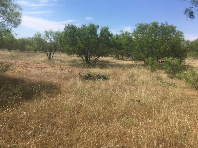 04 Turkey Meadow Lane, Weatherford, TX 76088 (MLS #13603705) :: The Hornburg Real Estate Group