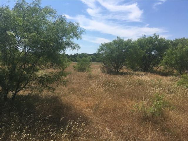 06 Turkey Meadow Lane, Weatherford, TX 76088 (MLS #13604314) :: The Hornburg Real Estate Group