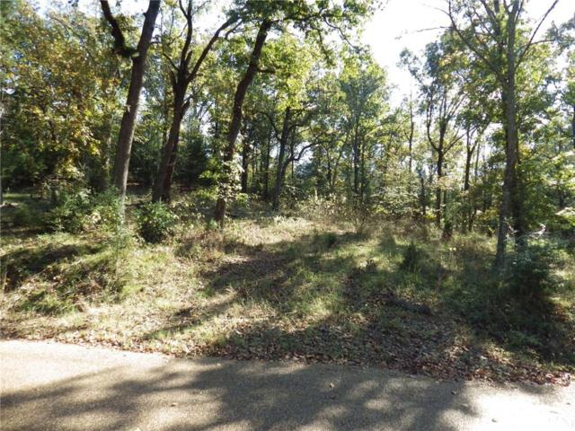 0 Cedar Oaks Drive, Mabank, TX 75156 (MLS #13606840) :: The Heyl Group at Keller Williams