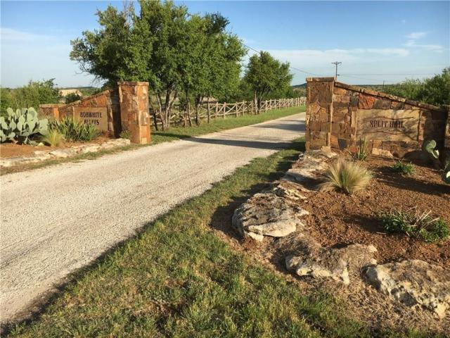 Lot 5 Split Rail Drive, Possum Kingdom Lake, TX 76449 (MLS #13609645) :: The Chad Smith Team