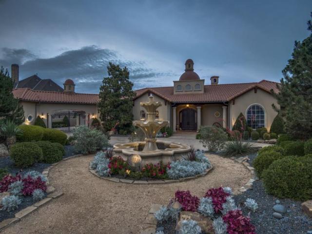 5564 Monterey Drive, Frisco, TX 75034 (MLS #13612666) :: Kimberly Davis & Associates
