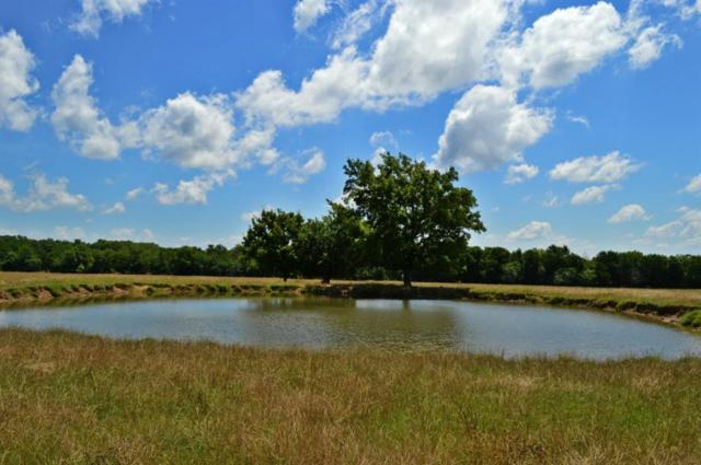 0000 Cr 2810, Honey Grove, TX 75446 (MLS #13619105) :: Frankie Arthur Real Estate