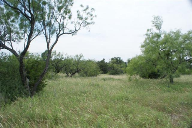 F1 Stagecoach Trail, Gordon, TX 76453 (MLS #13621603) :: Front Real Estate Co.