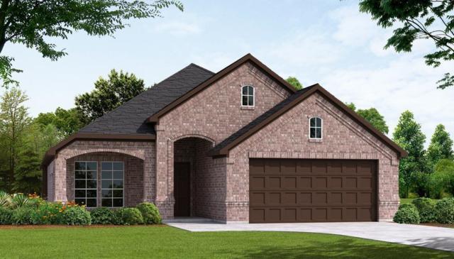 207 Carson Drive, Waxahachie, TX 75167 (MLS #13631022) :: Century 21 Judge Fite Company