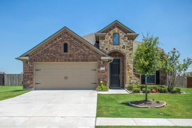 1505 Laguna Del Sol Drive, Little Elm, TX 75068 (MLS #13631822) :: The Cheney Group