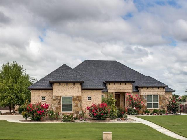150 Timberland Lane, Aledo, TX 76008 (MLS #13631904) :: The Mitchell Group