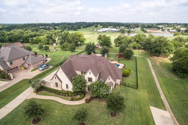 260 Whistling Duck Lane, Double Oak, TX 75077 (MLS #13632392) :: Real Estate By Design