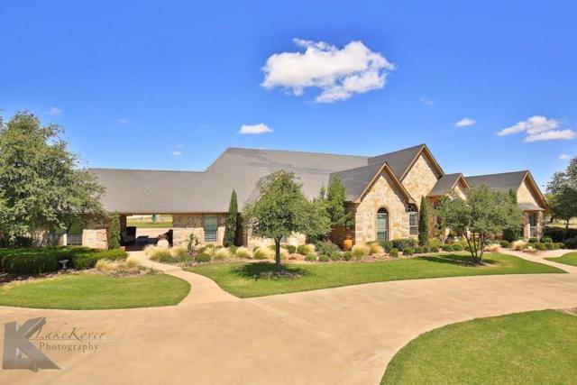 358 Southwind Circle, Abilene, TX 79602 (MLS #13647516) :: The Tonya Harbin Team