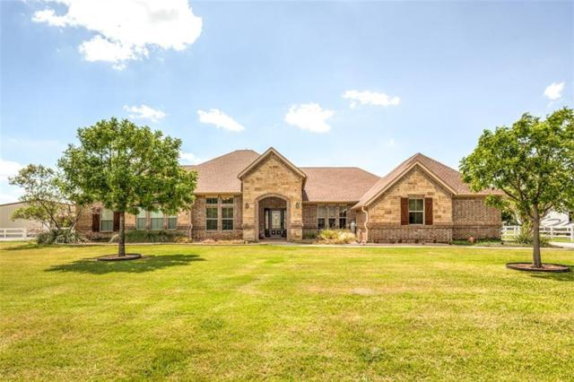 14201 Rising Spring Road, Haslet, TX 76052 (MLS #13647944) :: The Marriott Group