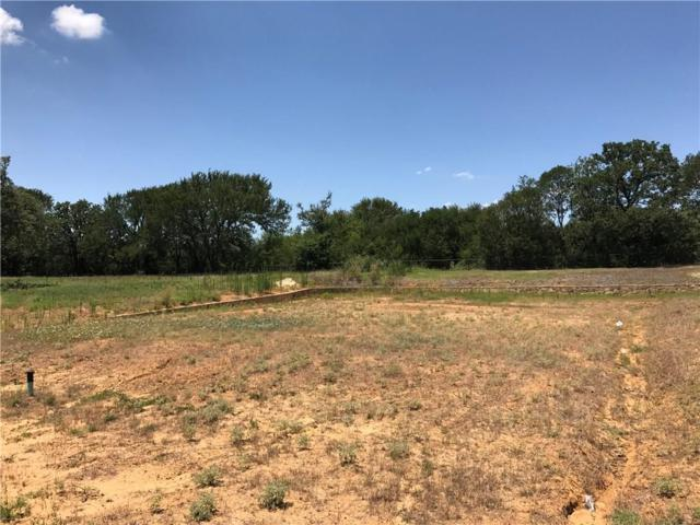 Lot 7 Big Sky Way, Argyle, TX 76226 (MLS #13648182) :: The Real Estate Station