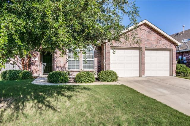 917 Silktree Drive, Fate, TX 75087 (MLS #13648213) :: Exalt Realty