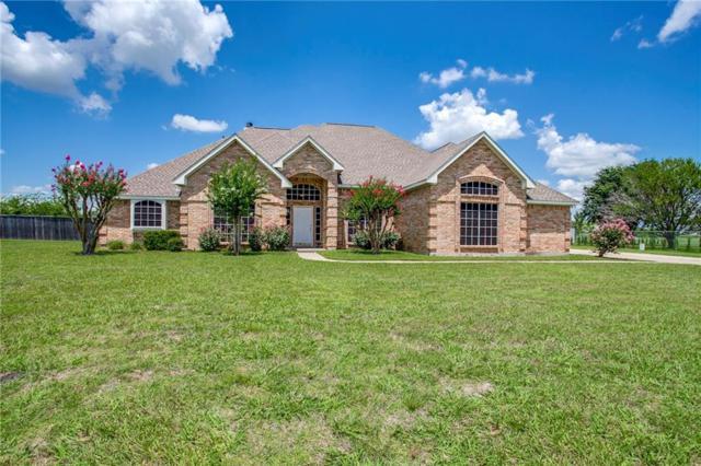 16003 County Road 221, Forney, TX 75126 (MLS #13654400) :: Exalt Realty