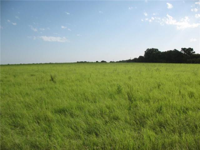 650 County Road, Comanche, TX 76444 (MLS #13656495) :: The Tonya Harbin Team