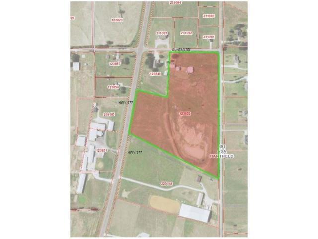 21.211 Hwy 377, Whitesboro, TX 76273 (MLS #13656953) :: MLux Properties