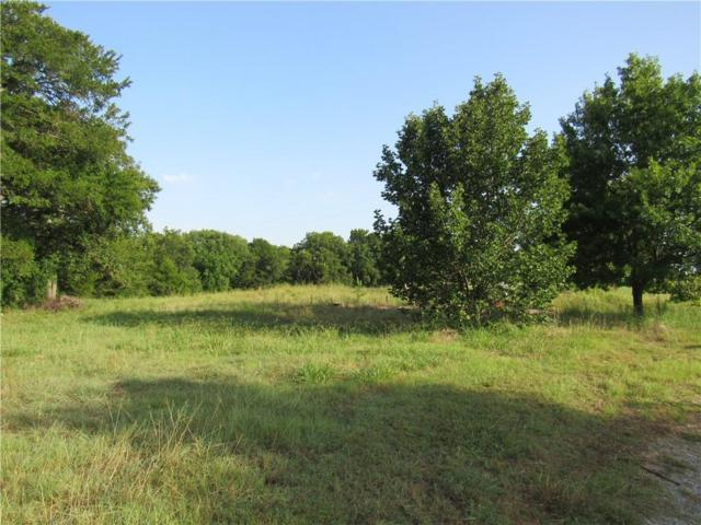 129 Mitchell, Sherman, TX 75090 (MLS #13657205) :: MLux Properties