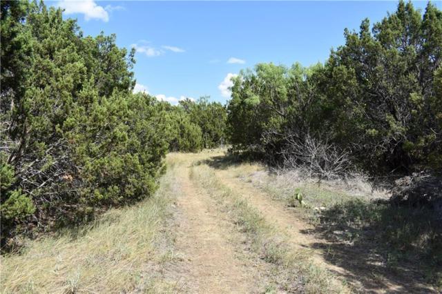TBD Braune Rd, Abilene, TX 79603 (MLS #13657791) :: MLux Properties