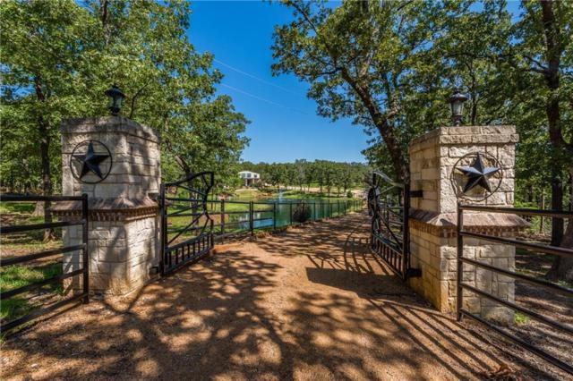 199 Buck Trail, Sadler, TX 76264 (MLS #13659508) :: RE/MAX Landmark