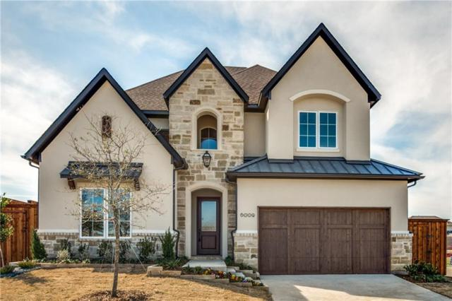 6009 Westchester Lane, Frisco, TX 75034 (MLS #13663873) :: The Cheney Group