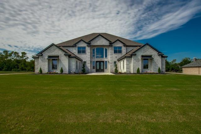 4191 Serenity Trail, Mckinney, TX 75071 (MLS #13673639) :: Real Estate By Design