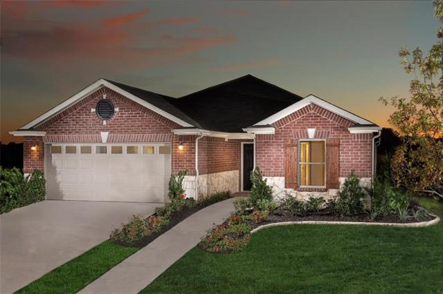 4521 Maplewood Avenue, Balch Springs, TX 75180 (MLS #13675555) :: The Marriott Group