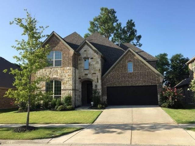 13819 Clusterberry Drive, Frisco, TX 75035 (MLS #13676309) :: Real Estate By Design