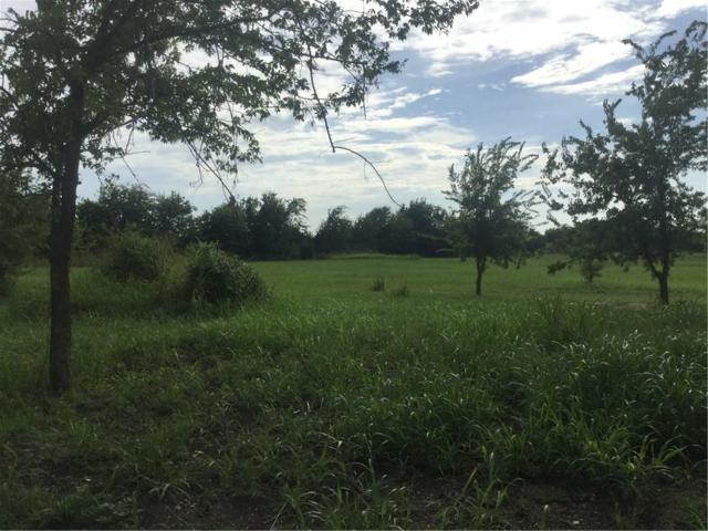 3146 Greenway Lane, Melissa, TX 75454 (MLS #13676501) :: Real Estate By Design