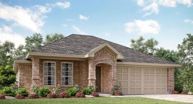 121 Rain Cloud Drive, Waxahachie, TX 75165 (MLS #13676818) :: Century 21 Judge Fite Company