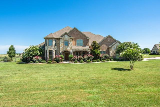 1229 Ruby Lea Lane, Fort Worth, TX 76179 (MLS #13676841) :: The Mitchell Group