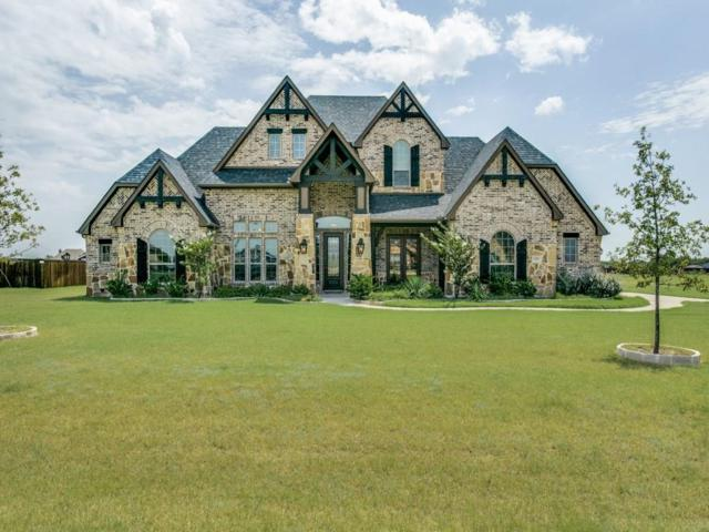 6030 Plainview Road, Midlothian, TX 76065 (MLS #13676996) :: Century 21 Judge Fite Company