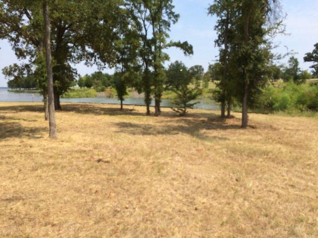 2 Sandy Cove, Streetman, TX 75859 (MLS #13682066) :: RE/MAX Town & Country