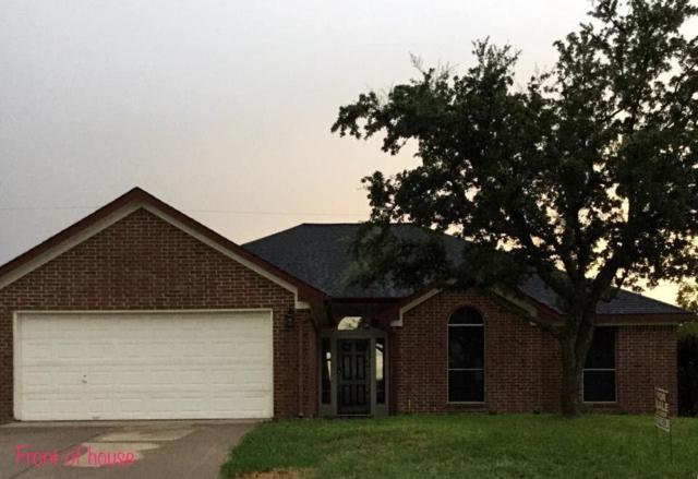 1209 Rene Drive, Alvarado, TX 76009 (MLS #13688125) :: Potts Realty Group