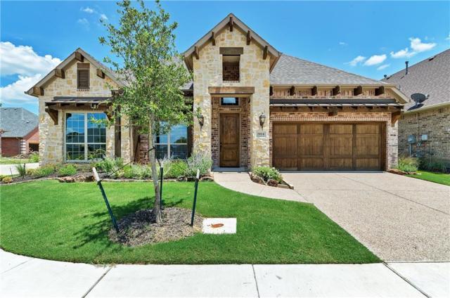 2014 Anemone Drive, Flower Mound, TX 75022 (MLS #13690671) :: Team Hodnett