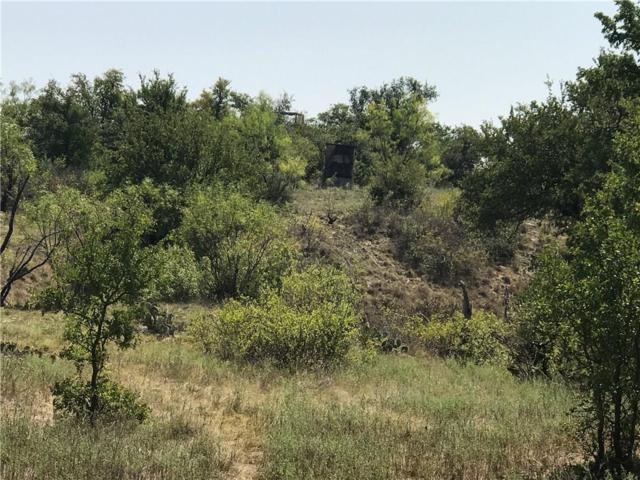 TBD 1 County Road 411 W, Brownwood, TX 76801 (MLS #13692592) :: Team Hodnett