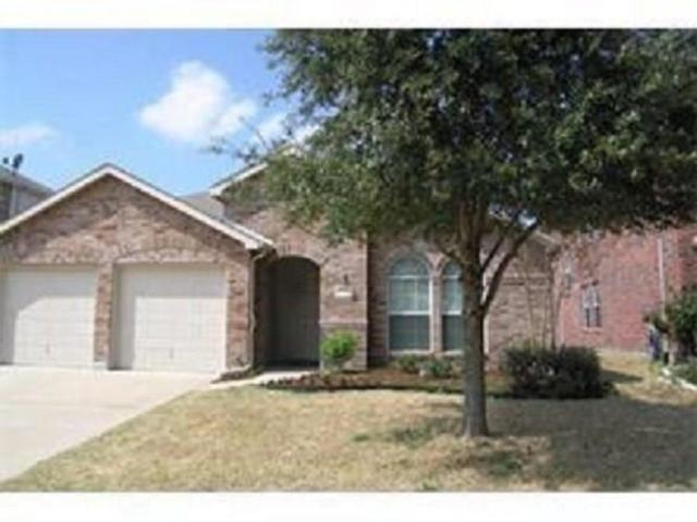 1026 Grimes Drive, Forney, TX 75126 (MLS #13694413) :: Exalt Realty