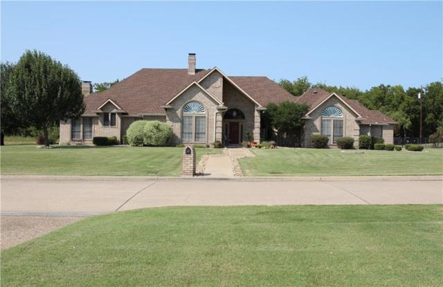 223 Sunray Lane, Sunnyvale, TX 75182 (MLS #13695291) :: Exalt Realty