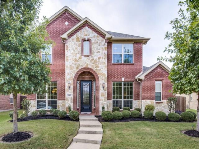 803 Cougar Drive, Allen, TX 75013 (MLS #13696786) :: Robbins Real Estate