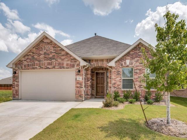 725 Bird Creek Drive, Little Elm, TX 75068 (MLS #13698355) :: The Cheney Group