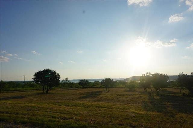 L 1055 Cinnamon Teal, Possum Kingdom Lake, TX 76449 (MLS #13699032) :: Team Hodnett