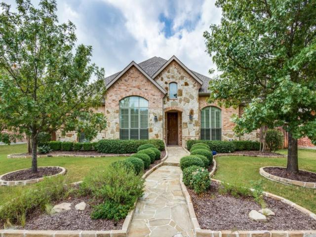 1317 Sunland Park Drive, Frisco, TX 75033 (MLS #13699260) :: MLux Properties