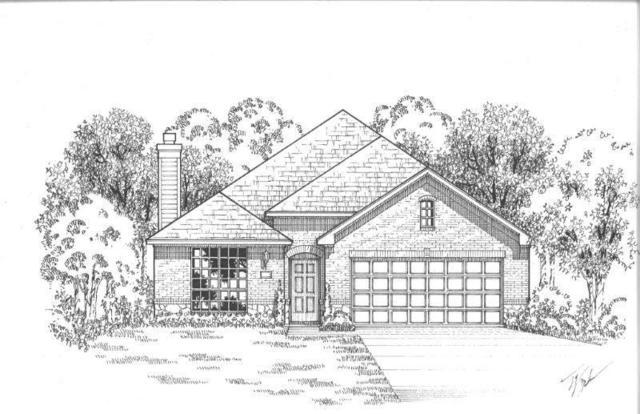 763 Harrington Lane, Celina, TX 75009 (MLS #13700059) :: MLux Properties