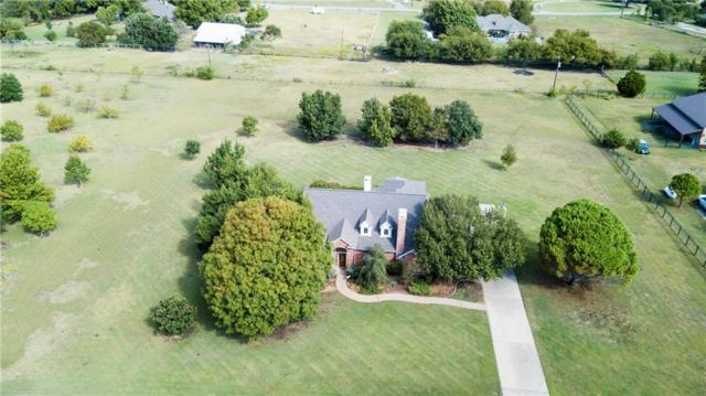 13 Glenbrook Circle, Lucas, TX 75002 (MLS #13701205) :: Frankie Arthur Real Estate