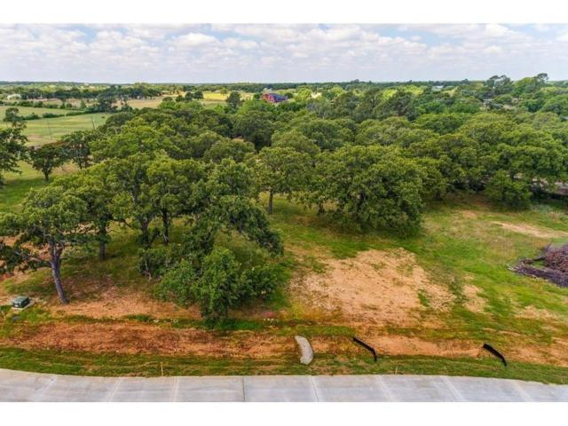 6900 Chestnut Ridge Drive, Argyle, TX 76226 (MLS #13707998) :: The Real Estate Station