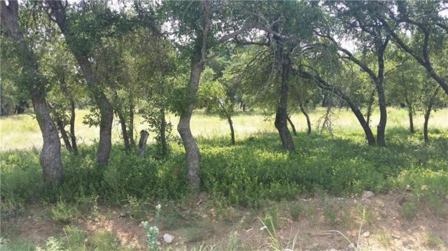 #548 Feather Bay Drive, Brownwood, TX 76801 (MLS #13709079) :: The Chad Smith Team