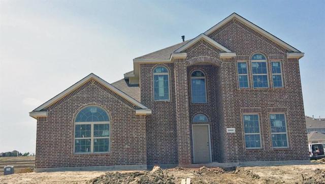 1003 Lombard Drive, Rockwall, TX 75087 (MLS #13709361) :: RE/MAX Landmark